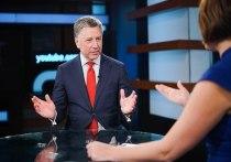 Волкер отверг идею Путина о референдуме в Донбассе