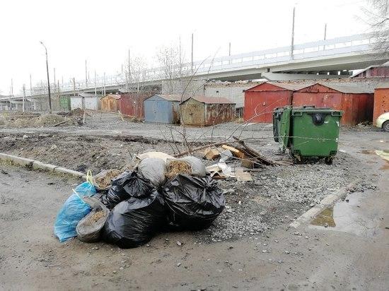 Спокойствие: мусоросжигающий завод в Кондопоге обещают не строить