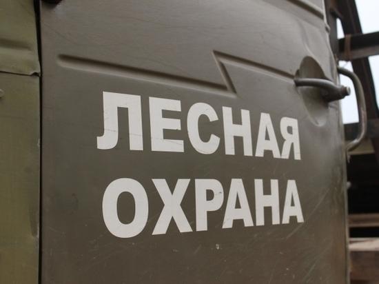 В Бурятии проходит операция «Лесовоз»