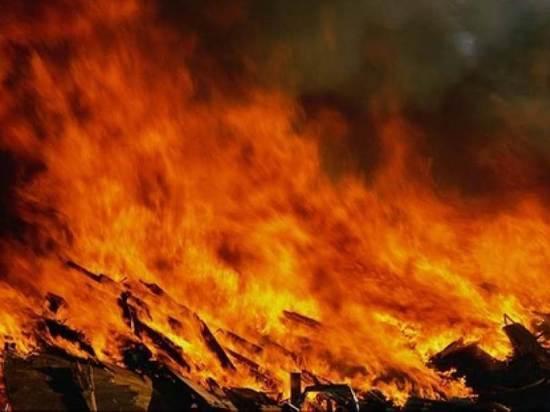 Корова сгорела вместе с сараем в Чувашии