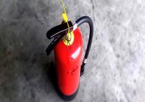 Лже-пожарные требовали деньги и подарки у алтайских предпринимателей