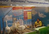 Сельхозпроизводители Чувашии в Москве