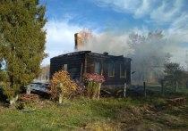 Калужанин погиб в горящем доме, спасая кошку