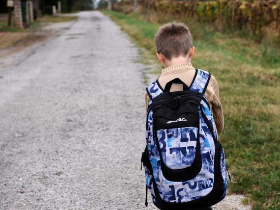 В Мордовии попытаются сделать дороги к школам безопаснее