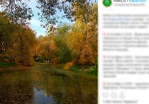 В Ботаническом саду создали первую российскую систему сбора дождевой воды