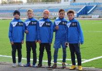 На «Динамо» в Омске уложили новый газон за 10 млн рублей
