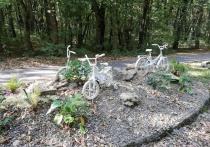 Вскоре в Ставрополе появятся полтора километра новых велодорожек