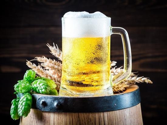 Пиво подорожает из-за глобального потепления, предсказали учёные