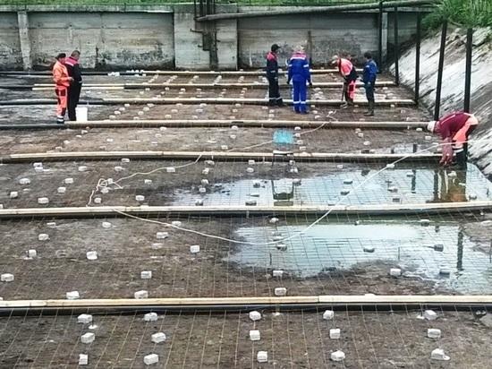 В Карелии из канализационных отходов будут делать полезные удобрение