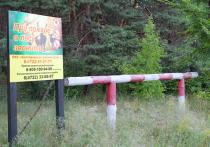 В Белгородской области продлён особый противопожарный режим