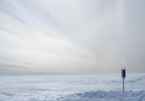 Американский геофизический союз опубликовал видеоролик, позволяющий услышать звуки, которые издают ледники на шельфе Росса