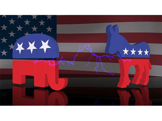 Виды на выборы