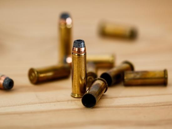 """Продавца интересует только лицензия: почему """"керченскому стрелку"""" выдали патроны"""