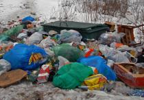 Москва отправит свой мусор в другие регионы