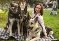 В Кемерове пройдет детский концерт в поддержку бездомных животных
