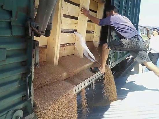 Минсельхоз России пообещал предоставить льготы перевозчикам зерна