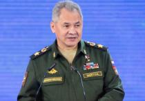 Шойгу:  группировка ИГ полностью разгромлена в Сирии при поддержке России