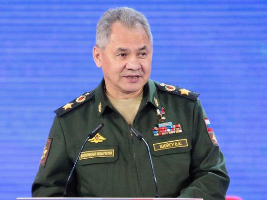 Шойгу: группировкаИГ навсе 100%  разгромлена вСирии при помощи  Российской Федерации