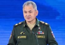 Шойгу призвал страны АСЕАН оказать гуманитарную помощь Сирии
