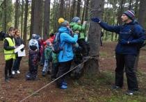 «Будет – но на бумаге»: в Карелии ликвидируют детский туризм