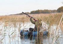 На Кубани в разгаре осенний сезон охоты