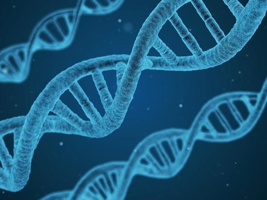 Ученые нашли способ предсказать время смерти человека по генам