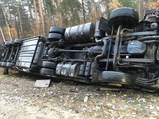 Под Тамбовом фура улетела в кювет: пострадал водитель