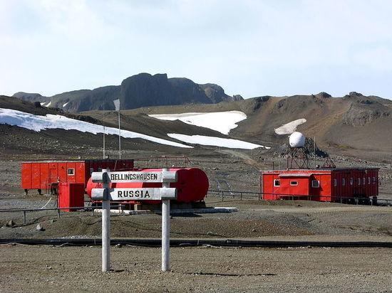 Петербуржцы поспорили и устроили поножовщину в Антарктиде