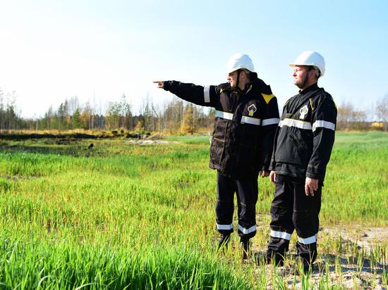 На территории Мамонтовского месторождения ООО «РН-Юганскнефтегаз» проведены работы по рекультивации земель