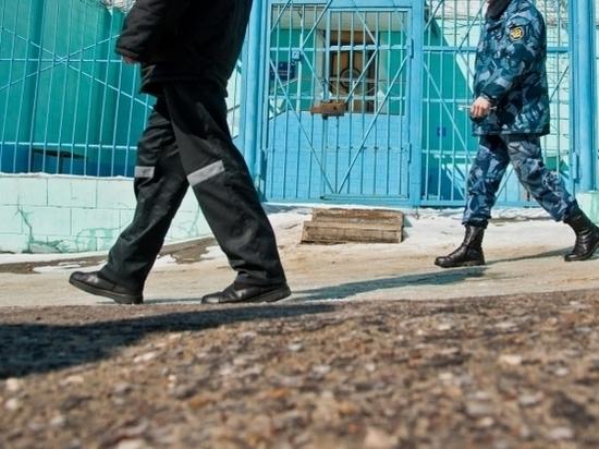 Волгоградца, не уплатившего 11 млн руб. налогов, оставили за решеткой