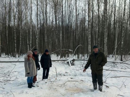 Ульяновские фсбэшники вплотную занялись незаконными вырубками леса
