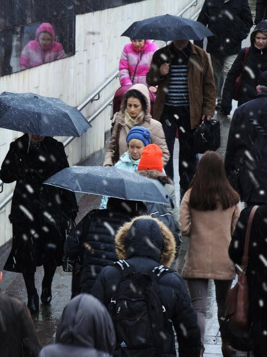 Снег с дождем ожидается в четверг в российской столице