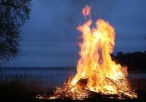 Вред от древесного дыма воздействует на респираторную иммунную систему людей, причем его влияние значительно зависит от пола