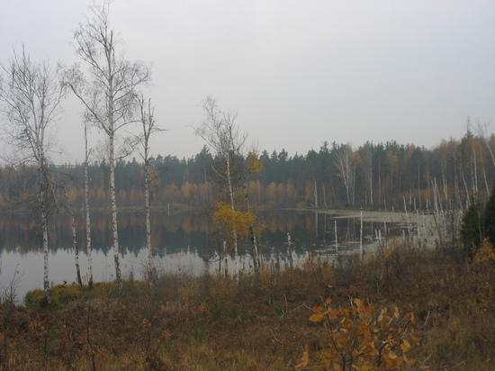 Смердячье озеро: след космической катастрофы скрывается на востоке Московской области