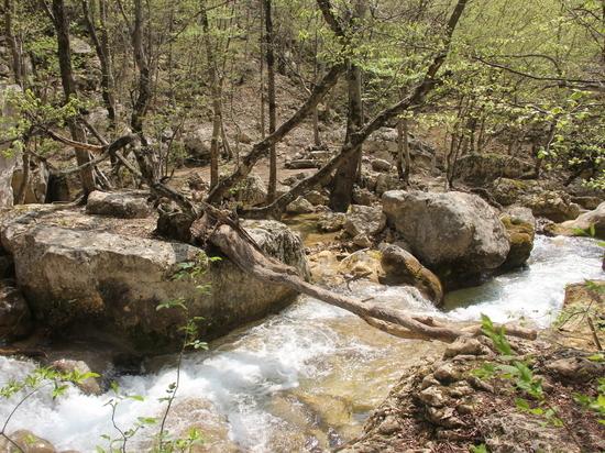 Крым великолепный: воскресный поход к истокам Узунджи