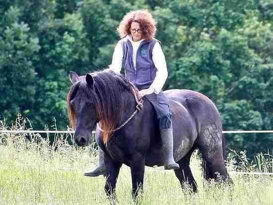 Основательницу фонда дикой природы в РФ убила лошадь под Брянском