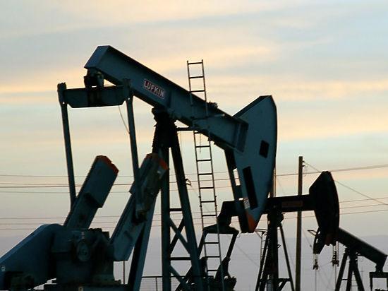 Парламентарии попросили Правительство РФ не повышать акцизы на топливо