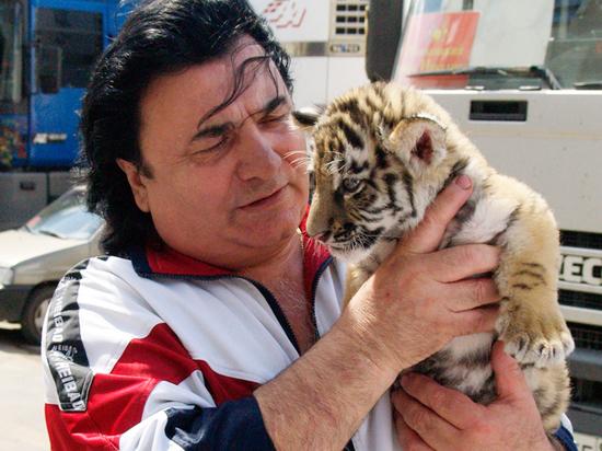 «Наберут уродов и гастролируют»: дрессировщик о трагедии с ребенком и львицей