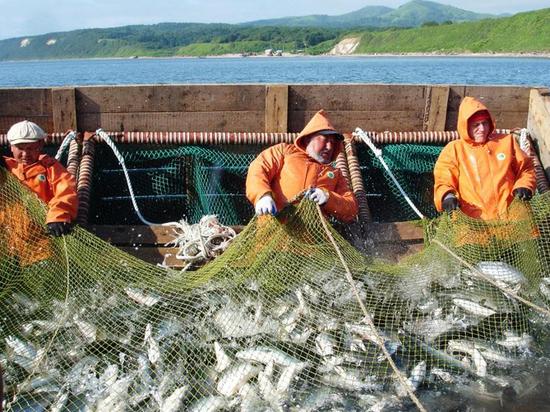 Какую зарплату получают российские рыбаки