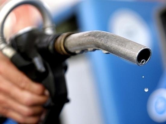 РБК: цены на бензин предложили повысить на четыре-пять рублей
