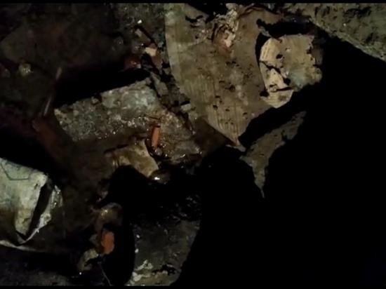 В подвале барнаульской многоэтажки жители обнаружили фекальное «озеро»