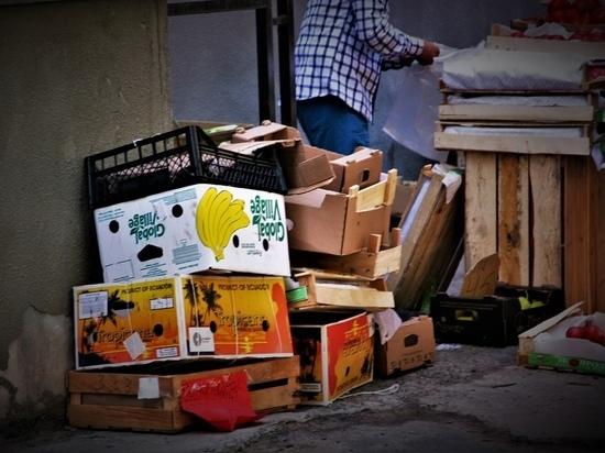«Компост-мобиль» соберёт у петрозаводчан пищевые отходы для переработки в гумус
