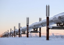 В украинском «Нафтогазе» раскрыли детали «плана Б», к реализации которого приступили в связи с возведением трубопровода «Северный поток—2»