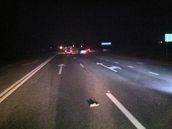 Водитель из Ульяновска сбил инспектора ДПС в Сызранском районе, который погиб на месте