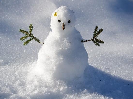 Британские родители раскритиковали гендерно-нейтральных снеговиков