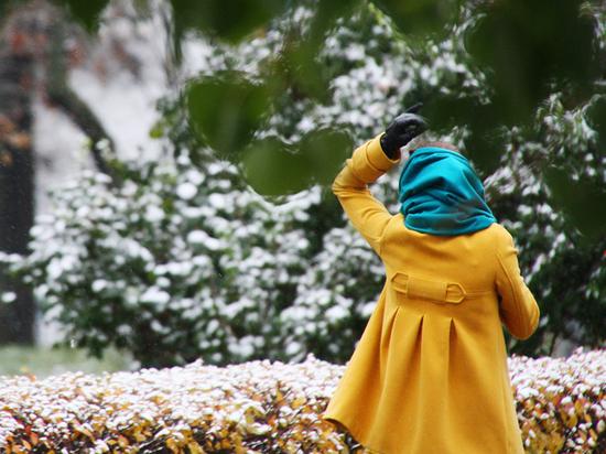 Синоптики рассказали, когда в Москве пойдет снег