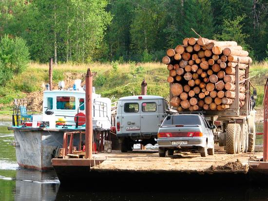 «Хищнически вырубают лес»: Россия пригрозила лишить Китай своей древесины