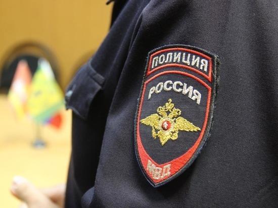 Тамбовчанина за оскорбление полицейских приговорили к обязательным работам
