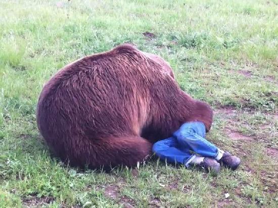 На Камчатке медведь убил подростка, который спасал младшего брата