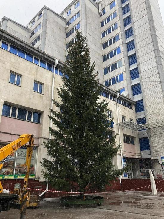 В Омске под мокрым снегом водрузили елку у «Каскада»